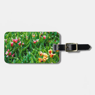 Field with Pink and Yellow Tulips Luggage Tag