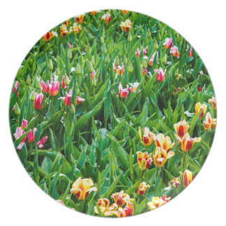 Field with Pink and Yellow Tulips Plate