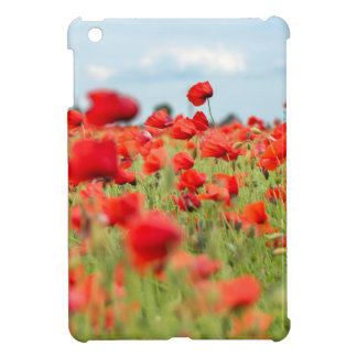 Field with red papavers cover for the iPad mini