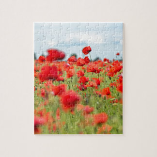 Field with red papavers jigsaw puzzle