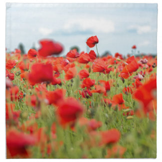 Field with red papavers napkin
