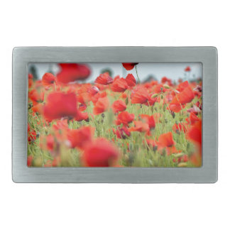 Field with red papavers rectangular belt buckles