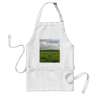 Fields Clouds Ireland Grass Aprons