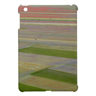 Fields in the Sibellini Mountains in Italy Case For The iPad Mini