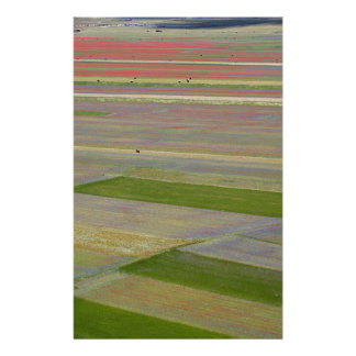 Fields in the Sibellini Mountains in Italy Customized Stationery
