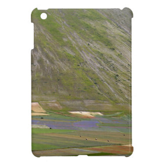Fields in the Sibellini Mountains in Italy iPad Mini Cases