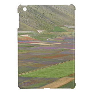 Fields in the Sibellini Mountains in Italy iPad Mini Cover