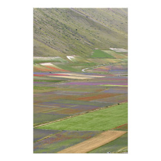 Fields in the Sibellini Mountains in Italy Personalised Stationery