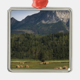 Fields with bailed hay, Alberta, Canada Silver-Colored Square Decoration