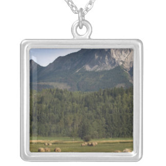 Fields with bailed hay, Alberta, Canada Square Pendant Necklace