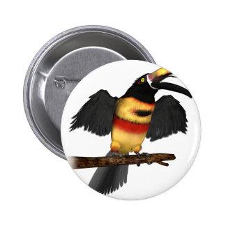 Fiery-Bill Aracari Pins