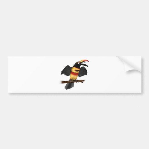 Fiery-Bill Aracari Bumper Sticker