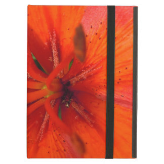 Fiery Orange & Red Lily II iPad Air Case