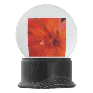 Fiery Orange & Red Lily II Snow Globes