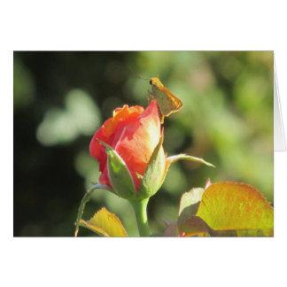 Fiery Skipper Butterfly on Rosebud Note Card