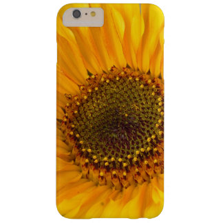 Fiery Sunflower Barely There iPhone 6 Plus Case