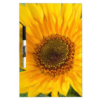 Fiery Sunflower Dry Erase Board