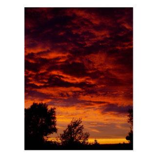 Fiery Sunset Postcard