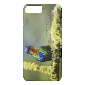 Fiery-throated Hummingbird iPhone 8 Plus/7 Plus Case