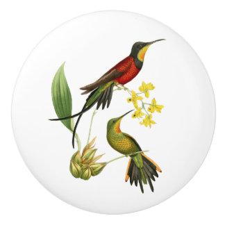 Fiery Topaz Hummingbird Ceramic Knob
