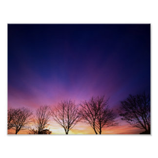 Fiery winter sunset with line of bare trees poster