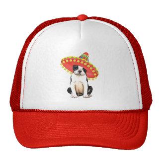 Fiesta Boston Terrier Cap