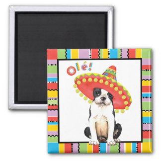 Fiesta Boston Terrier Square Magnet