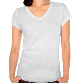 Fifth Grade Teacher Plaid Apple T-shirts