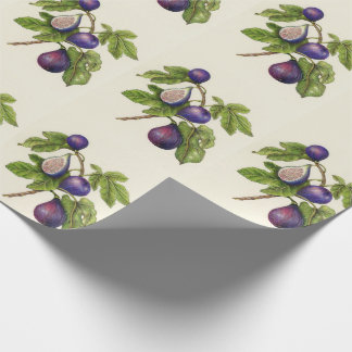Fig Print Christmas Wrapping Paper - Traditional