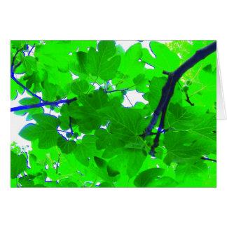 Fig tree leaves card