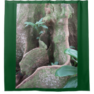 Fig Tree Roots Shower Curtain