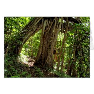 Fig Tree Tunnel Card