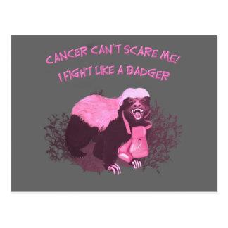 Fight Like A Badger Postcard