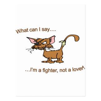 Fighter Not Lover Postcard