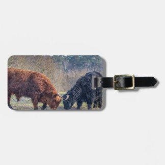 Fighting black and brown scottisch highlander bull luggage tag