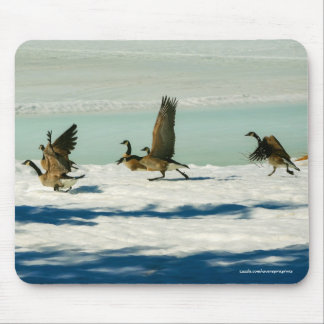 Fighting Canada Geese & Snow Wildlife Photo Mouse Pad