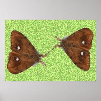 Fighting Moths Poster