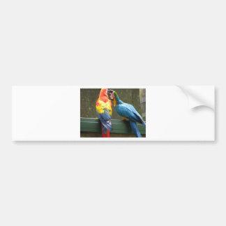 Fighting Parrots Car Bumper Sticker