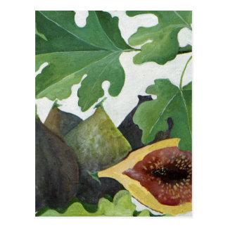 Figs 2013 postcard