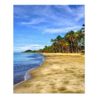 fiji-293826 fiji beach sand palm trees tropics sky 11.5 cm x 14 cm flyer