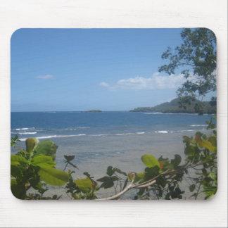 Fijian Coast Mousepad