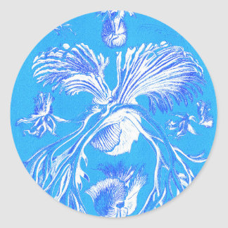 Filicinae on Blue Background Classic Round Sticker