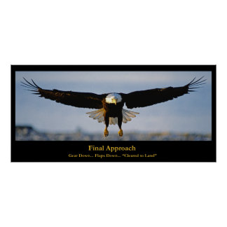 Final Approach Bald Eagle Custom Poster