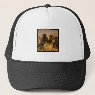 FINAL FRONTIER TRUCKER HAT