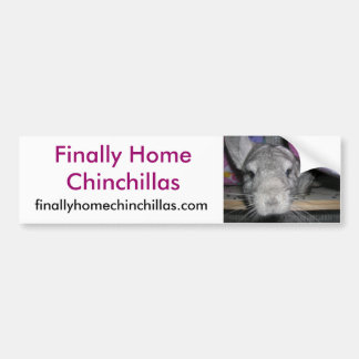 Finally Home Chinchillas Bumper Sticker, Esther Bumper Sticker