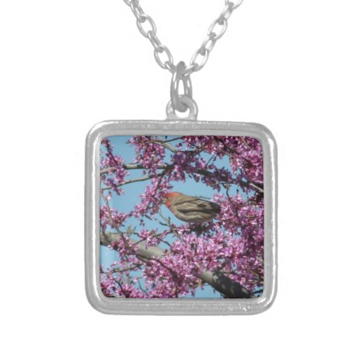 Finch in a Redbud Tree Necklaces