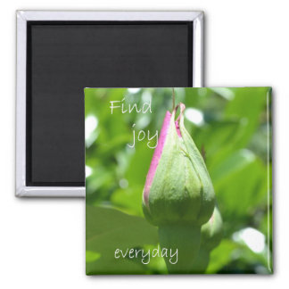 Find Joy Everyday Magnet