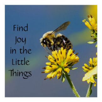 Find Joy in the Little Things Bumble Bee Poster