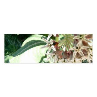 Find the Ladybug! Pack Of Skinny Business Cards