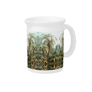 Fine Art Fern - Art Forms of Nature Pitcher